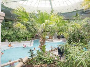 Tropisch zwembad